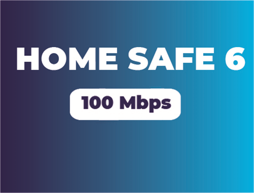 HOME SAFE 6